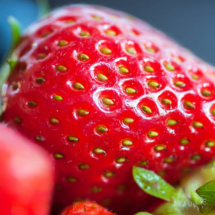 strawberries fruits 5146 215x215 Nature