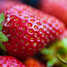 strawberries fruits 5150 215x215 Nature