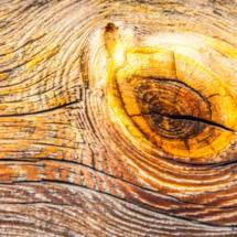 wood wood texture 2183 215x215 Various