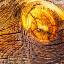 wood wood texture 2190 215x215 Various