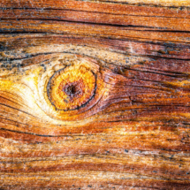 wood wood texture 3457 215x215 Various