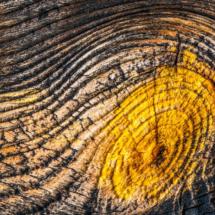 wood wood texture 3460 215x215 Various