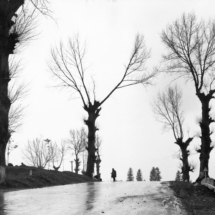Henri Cartier Bresson Bucovine region. 215x215 Photos of Henri Cartier Bresson