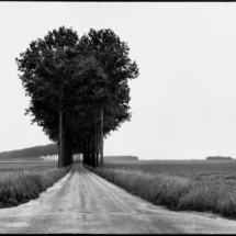 Henri Cartier Bresson FRANCE. FRANCE. Brie. 1968. 215x215 Photos of Henri Cartier Bresson
