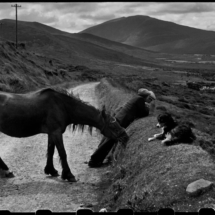 Henri Cartier Bresson IRELAND. Munster. County Kerry. Dingle Peninsula. 1952. 215x215 Photos of Henri Cartier Bresson