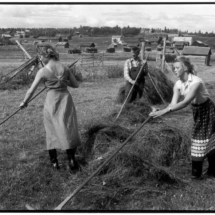 Henri Cartier Bresson SWEDEN. 1956. 215x215 Photos of Henri Cartier Bresson