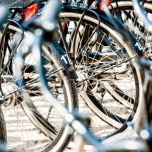 Nederland Zaanse Schans 0396 215x215 Various