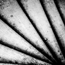 Staircases on Piotrkowska Street Lodz 81133 215x215 Various