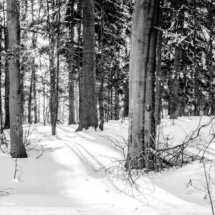 winter, zima, Kocierz, -89798