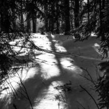 winter, zima, Kocierz, -89801