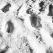 winter, zima, Kocierz, -89806