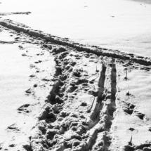 winter, zima, Kocierz, -89809