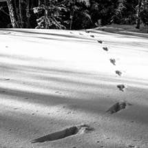 winter, zima, Kocierz, -89813