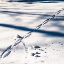 winter, zima, Kocierz, -89814