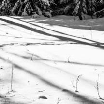 winter, zima, Kocierz, -89817